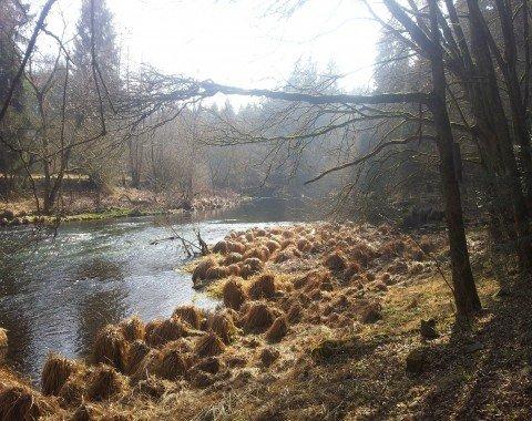 Beautiful landscape along the Ilz in springtime.