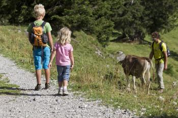 Auf dem Rundwanderweg kannst du auch echte Tiere beobachten.