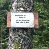 Motivationshilfe auf halbem Weg :-)