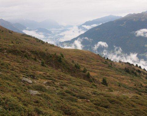Das erste Stück dieser Etappe führt am Südhang des Venetberges Richtung Wenns