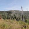 Blick auf den Siebensteinfelsen (1263m)