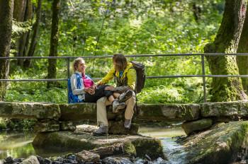 Grenzenloses Wandervergnügen ist seit Sommer 2018 dank der Goldsteigvariante in Böhmen möglich.