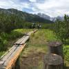 Im Löckermoos läuft du teilweise auf Holzstegen.