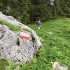 Zur Orientierung am Wanderpfad dient die rot-weiß-rote Fahne der Alpenrepublik. Sie ist auf Steinen, am Boden sowie auf Bäumen aufgemalt.