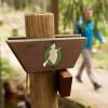 Der Harzer Hexenstieg ist durchgängig mit einer fliegenden Hexe markiert.
