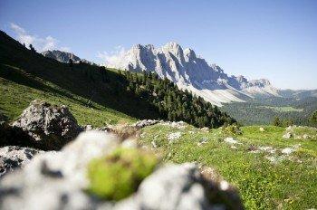 Inmitten der Berglandschaft