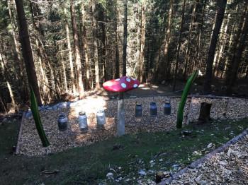 Die Wanderung durch Moosle's Zauberwald ist 4 km lang.