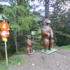In der Nähe der Bärenbadalm wird natürlich auch mit Infotafeln interessante Details über diese Waldbewohner vermittelt.