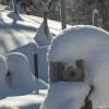 Schneeskultpur am Wanderweg