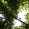 Eines der Highlights am Rothaarsteig ist die Hängebrücke bei Kühhude.