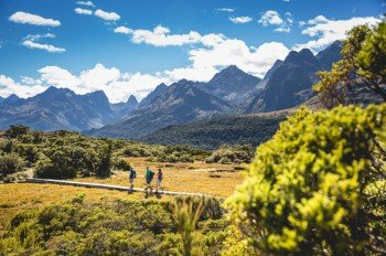 Auf 36 Kilometern führt dich der Track durch die neuseeländische Natur.