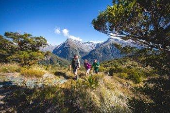 Erkunde den Mount Aspiring Nationalpark und den Fiordland Nationalpark zu Fuß!