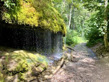 Der Schluchtensteig führt durch die abwechslungsreiche Landschaft des Südschwarzwalds.