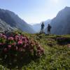 Auch einige alpine Abschnitte erwarten dich entlang des Spitzenwanderweges.
