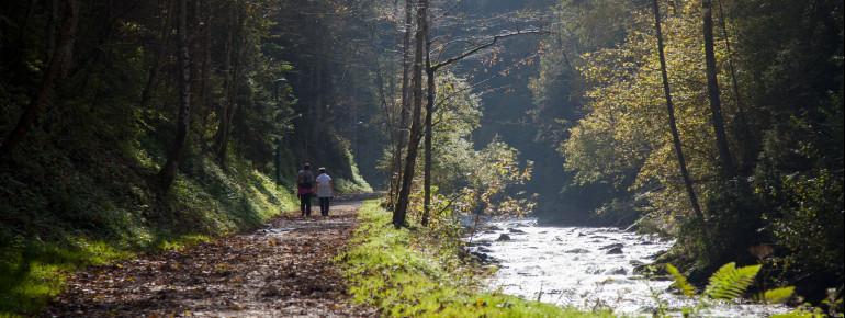 Zu Beginn der Wanderung geht es durch die Talbachklamm.
