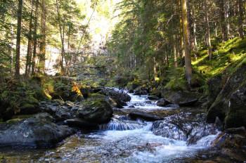 Ein Highlight des Wilde Wasser Wegs sind die Riesachfälle.