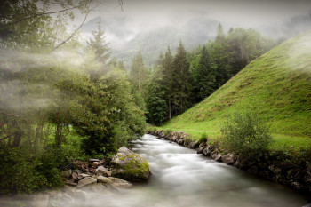 Die Wanderung verläuft entlang des unteren Talbachs.