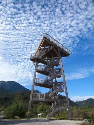 Der Vogelturm bietet dir eine Aussicht über die Tiroler Landschaft und über die verschiedensten Vogelarten.