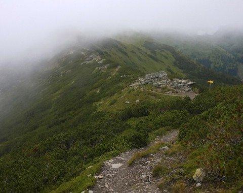 Der Wegabschitt am Grat zur Karlspitze