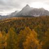 Auf der Tour kommst du an der sogenannten Eulenwiese vorbei, die im Herbst in bunten Farben erstrahlt.