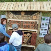 Auf der Tour gibt es mehrere Erklärungspunkte, bei denen den Wanderern die Bewohner des Waldes näher gebracht werden