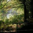 Unberührte Natur entlang der Ilz