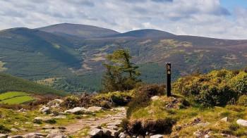 Genieße die herrliche Aussicht über das Glencree Tal!