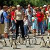 Täglich um 14 Uhr machen die Pinguine einen Spaziergang.