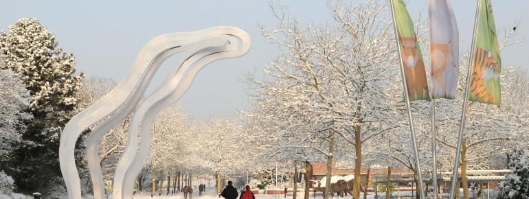 Der Vorplatz zum Zoo mitten im Winter.