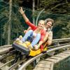 Die Ganzjahres-Rodelbahn Alpee Coaster ist 2,8 Kilometer lang.