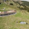 Von der Aussichtsplattform aus kannst du die Bären im Freigelände beobachten.