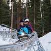 Der Coaster windet sich durch den Wald zwischen Gunners View und Sandy Park gleich neben dem Elk Camp Restaurant.