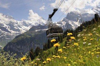 Mit der Luftseilbahn geht es auf den Gipfel.