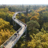 Vom Turm kannst du den 320 Meter langen Baumkronenpfad überblicken.