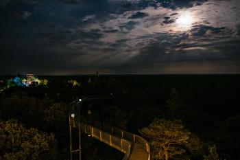 Der Baumkronenpfad ist besonders auch nachts ein Erlebnis.