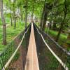 Besonderheit am Baumkronenpfad Hoherodskopf sind die Hängebrücken.