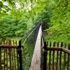 Hängebrücken bringen dich von Baum zu Baum.