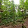 Auf Hängebrücken geht es von einem Baum zum nächsten.