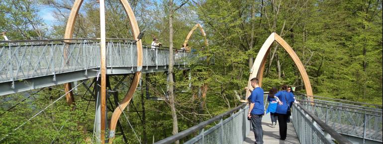 Der TreeTopWalk liegt am Rande vom Nationalpark und direkt am Edersee.