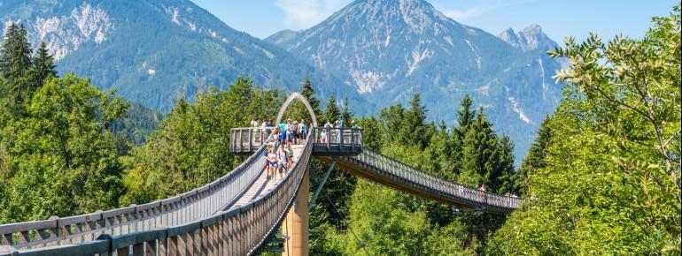 Der Baumkronenweg ist 450 Meter lang.