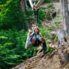 Auch zu zweit kann man durch den Wald fliegen, so lange das Maximalgewicht von 120 Kilogramm nicht überschritten wird.