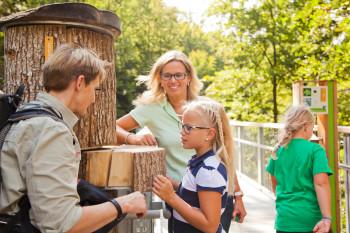 Lehrreiche Stationen informieren über die Umwelt und den Wald im Harz.