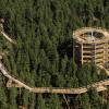 Der Baumwipfelpfad Lipno ist 625 m lang.