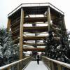 Der Baumwipfelpfad Lipno ist auch im Winter geöffnet.