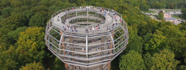 """Der Aussichtsturm """"Adlerhorst"""" ist 40 Meter hoch."""