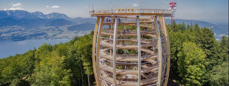 39 Meter hoch ist der Aussichtsturm des Baumwipfelpfads.