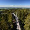 Der Skywalk Allgäu besteht aus einer 540m langen Hängebrückenkonstruktion, die von 14 Stahlmasten getragen wird.
