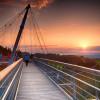 Blick auf die Hängebrückenkonstruktion des Baumwipfelpfades Skywalk Allgäu.