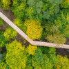 Baumwipfelpfad Usedom