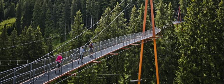 Die Golden Gate Brücke der Alpen gehört auch zum Baumzipfelpfad.
